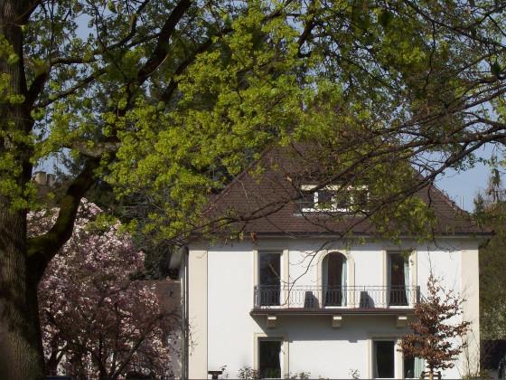 Checkliste für den Kauf einer gebrauchten Immobilie - aktion pro ...