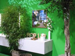 die neuesten badtrends f rs eigenheim aktion pro eigenheim. Black Bedroom Furniture Sets. Home Design Ideas
