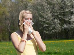 Blühende Bäume: Pollenallergiker